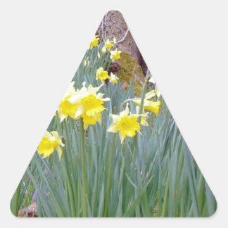 daffodil wood.jpg triangle sticker