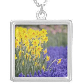 Daffodils and Grape Hyacinth, Keukenhof 3 Silver Plated Necklace