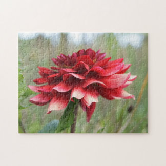 Dahlia Flower, 11x14 Photo Puzzle with Gift Box
