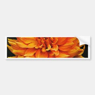Dahlia - Honeymoon  - Orange Bumper Sticker