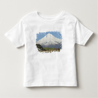 Dairy Cows and Farmland near Okato, and Mt Toddler T-Shirt
