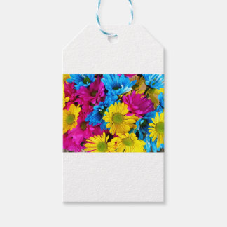 Daises Flowers Gift Tags