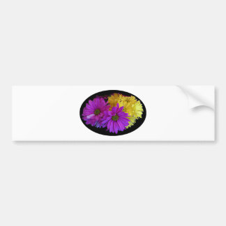 Daisies The MUSEUM Zazzle Gifts Bumper Stickers