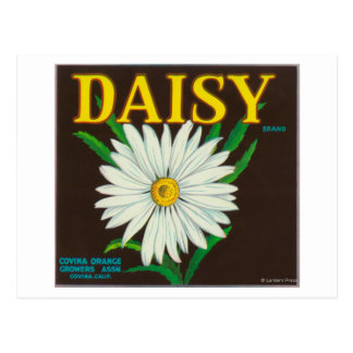 Daisy Brand Citrus Crate Label Post Cards