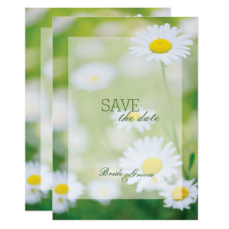 Daisy Daisies Flower Floral Summer SAVE the Date Card