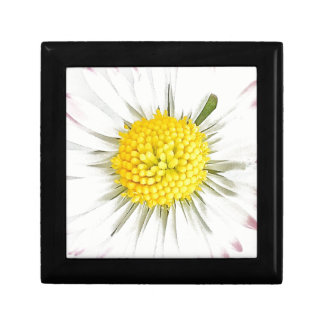 Daisy Flower Jewellery/Gift Box