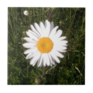 Daisy Print Tile