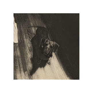 Daisy the Dachshund on Wood Wood Prints