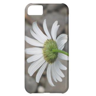 DaisyBack Phone Case