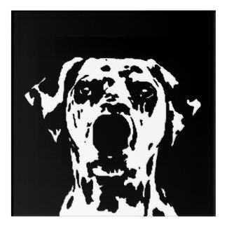 Dalmatian Black & White Acrylic Wall Art
