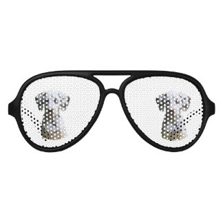Dalmatian puppy dog photo aviator sunglasses