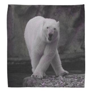 dancing polar bear bandanas