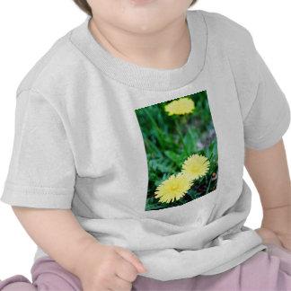 Dandelion Twins T Shirts