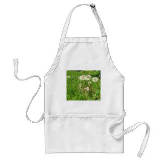 Dandelions – ready to make a wish standard apron