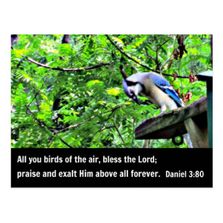 Daniel 3:80 Birds of the air, bless the Lord. Postcard