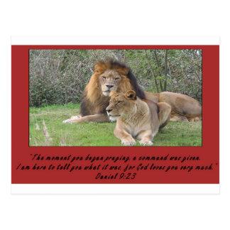 Daniel Lion with Verse Postcard