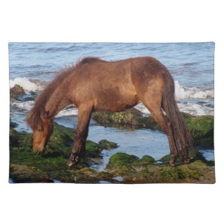 Dartmoor Pony Eating Seaweed In Remote South Devon Place Mats