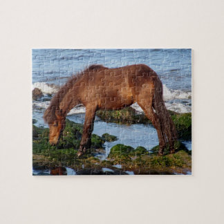 Dartmoor Pony Eating Seaweed In Remote South Devon Jigsaw Puzzles
