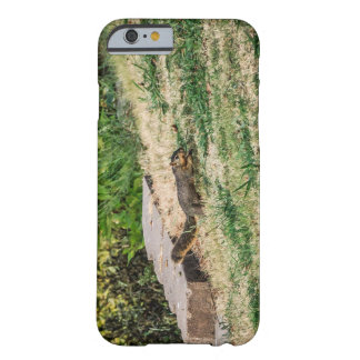 Dash Barely There iPhone 6 Case