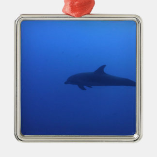 Dauphin Dolphin Customizable Ornament