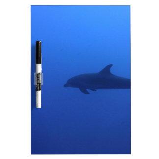 Dauphin Dolphin Customizable Dry Erase White Board