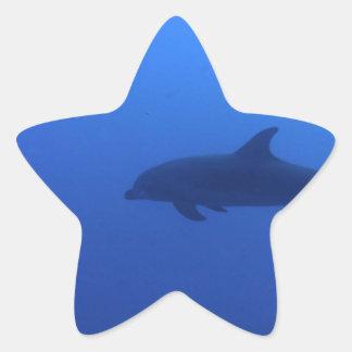 Dauphin Dolphin Customizable Star Sticker