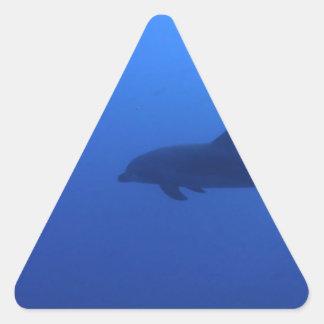 Dauphin Dolphin Customizable Triangle Sticker