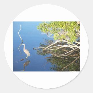 Daybreak in the Everglades Classic Round Sticker