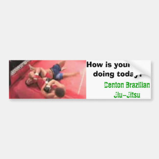 DBJJ, How is your arm doing today? Bumper Sticker