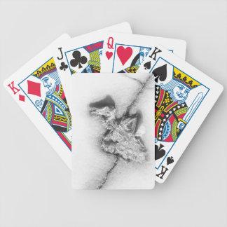 Dead Bird Card Deck Poker Deck