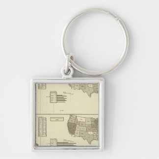 Deaf, Paupers, Prisoners statistical map Silver-Colored Square Key Ring