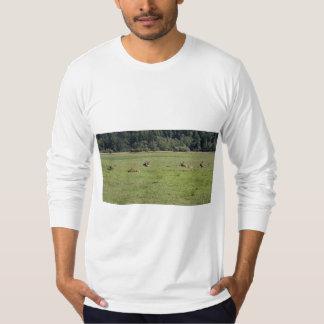 Dean Creek Roosevelt Elk T-Shirt