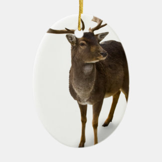 Dear Deer! Christmas Ornament