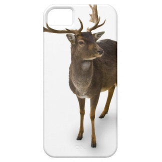 Dear Deer! iPhone 5 Cover