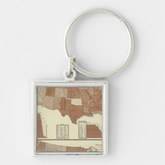 Deaths statistical map Silver-Colored square key ring