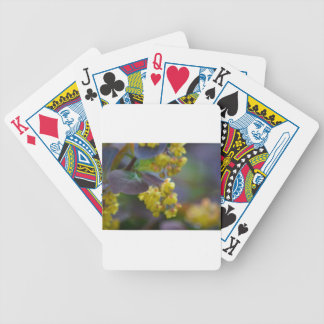 Deck cards