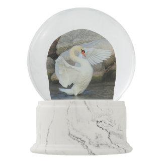 Decorative Snow Globes