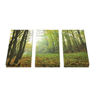 Deep In The Woods Wrapped Canvas