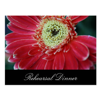 Deep Red Gerbera Rehearsal Dinner Invite Postcard