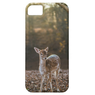 Deer in the Woods Barely There iPhone 5 Case