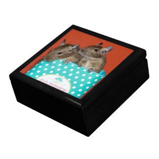 Degus in a Polka Dot Coffee Tin Gift Box