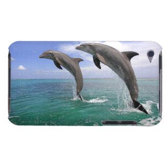 Delfin,Delphin,Grosser Tuemmler,Tursiops 4 Barely There iPod Case