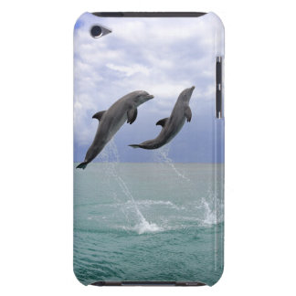Delfin (Grosser Tuemmler) iPod Touch Covers