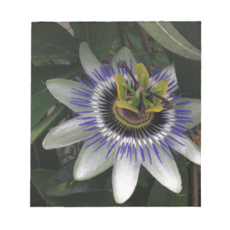 Delicate and Beautiful Passiflora Flower Notepad