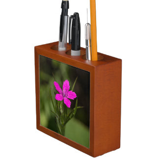 Deptford Pink Wildflower Floral Desk Organizer Desk Organiser
