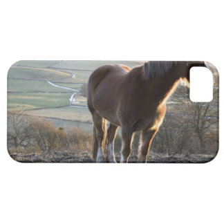 Derbyshire, England iPhone 5 Covers