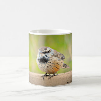 Desert Bird Coffee Mug