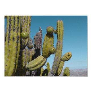 Desert Cactus 14 Cm X 19 Cm Invitation Card