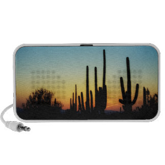 Desert Dreams Laptop Speakers