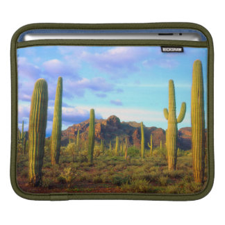 Desert in springtime iPad sleeve